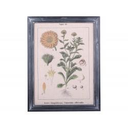 Tableau floral Chic Antique
